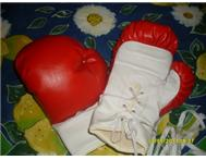 Boxing Bag Gloves and Wall Mountin...