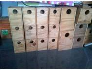 LOVE BIRDS AND BUDGIE BREEDING BOXSES 5 FOR R150
