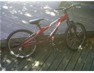 KIDS 20 INCH RALEIGH MOUNTAIN BIKE