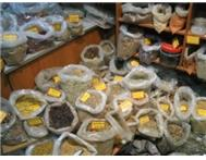 TRADITIONAL HEALER IN CAPE TOWN SOUTH AFRICA DR MOHAMMED Traditional Healer in Traditional Healing & Spells Western Cape Cape Town City Bowl - South Africa