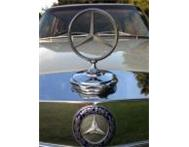 CLASSIC MERCEDES-BENZES FOR SALE W123 W124 W126 AND W108 Port Elizabeth