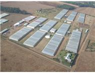 Farm for sale in Olifantsfontein