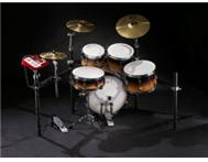 Pearl Electronic Kit