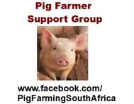 Pig Production Training Workshop
