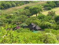 Game Farm Lodge For Sale in ELLISRAS ELLISRAS