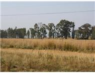 R 130 000 | Vacant Land for sale in Vaal Dam Vaaldam Free State