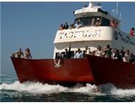 Year end Function Braai Boat Cruise Party