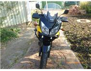 Suzuki V-Strom immaculate condition!