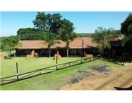 Bela Bela Lodge Lodge in Holiday Accommodation Gauteng Pretoria - South Africa