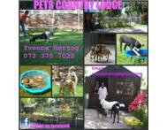 Pet Country Lodge