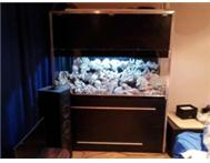 Marine aquarium new