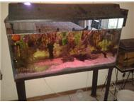 1.2m aquarium with stand and all ac...