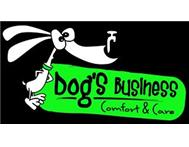 Dog Comfort and Care Services