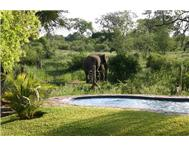 Game Farm Lodge For Sale in BALULE HOEDSPRUIT