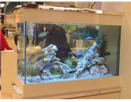 AQUARIUM FISH TANK MAINTENANCE - Co...