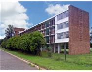 Apartment / flat on auction in Colenso