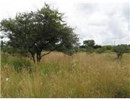 R 900 000 | Vacant Land for sale in Roossenekal Middelburg Mpumalanga
