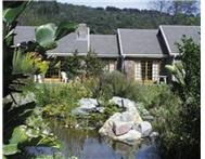 April Special: Amazing Resorts in Western Cape!!!