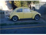 beetle plus 10000 for sports/turbo ...