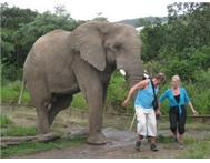 Afrikaya Leisure Travel Tour Operator in Travel & Tourism Limpopo Kruger National Park - South Africa