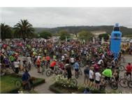 Great Brak Grabadoo Cycle Race